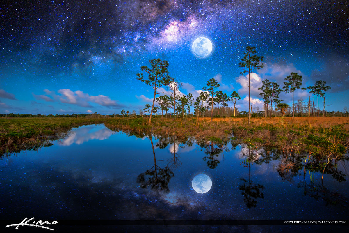 Full moon and Milkyway Galaxy covering forest and water.