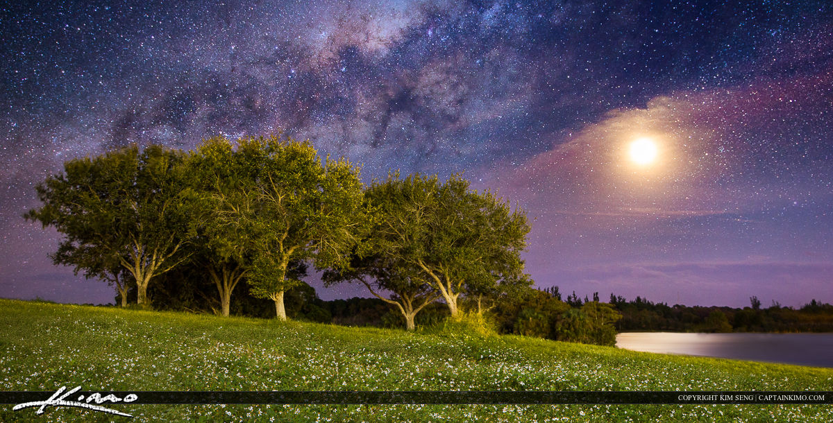 Milkyway Moonrise Over Grassy Hill with Trees