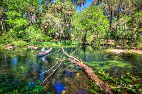 wpid20351-Canoeing-the-Hillsborough-River-State-Park-Florida.jpg