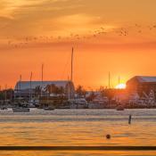 New Port Cove Marine Center Sunset Waterway