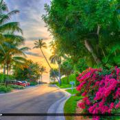Naples Florida Road to Beach Access
