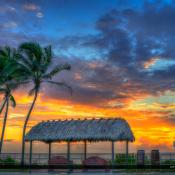 Juno Beach Pier Sunrise Coconut Tree Tiki Sunrise