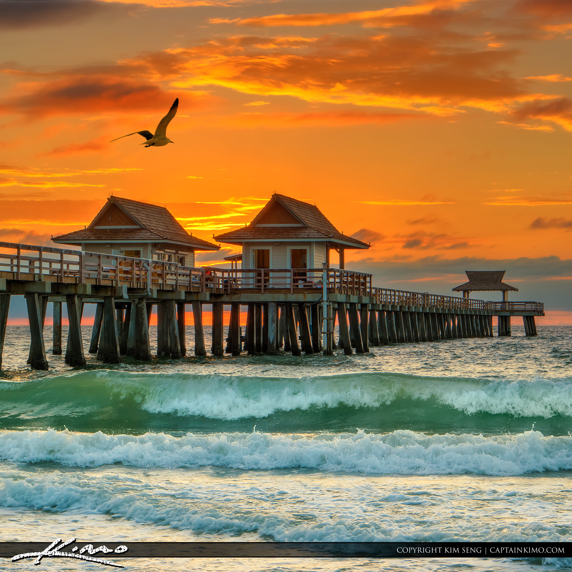 Landscape Lighting Naples Fl: Seagull Flying Over Naples Pier At Sunset