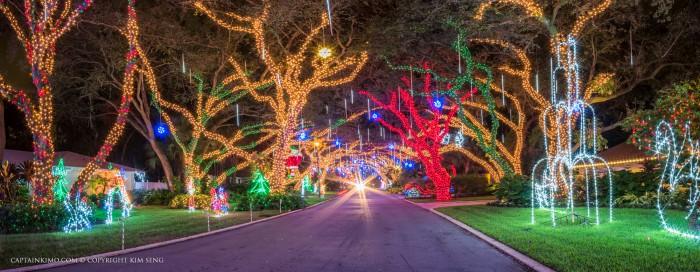 Snug Harbor Drive Christmas Lights Car Headlights Down Street