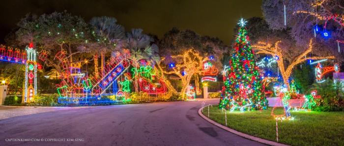 Snug Harbor Drive Christmas Lights Christmas Tree