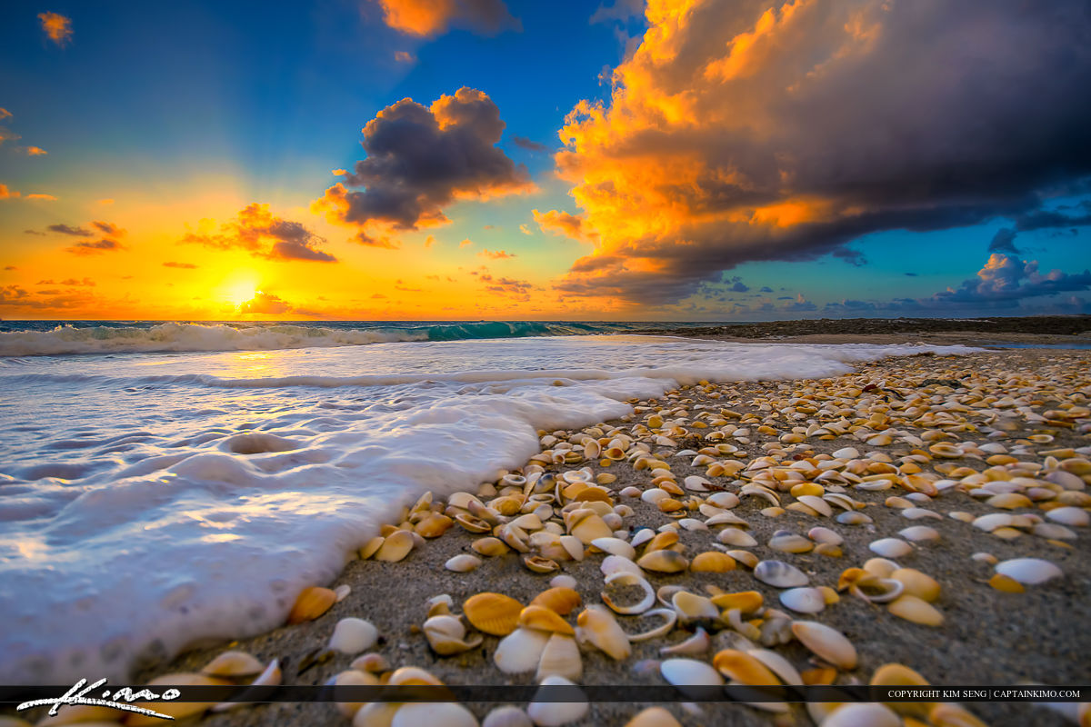 Sunrise at the beach on Singer Island, Florida with seashells.