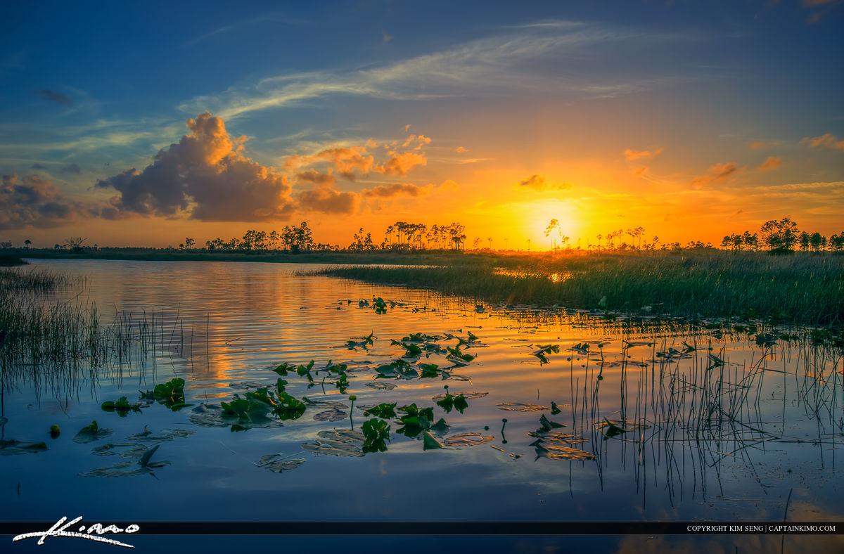 Florida Wetlands Jupiter Sunset Along the River