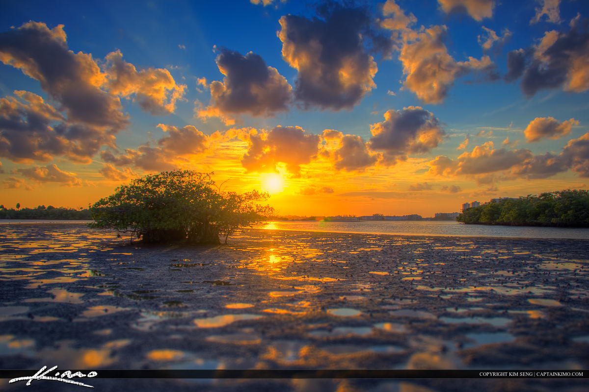 Sunset Macarthur Park Palm Beach County