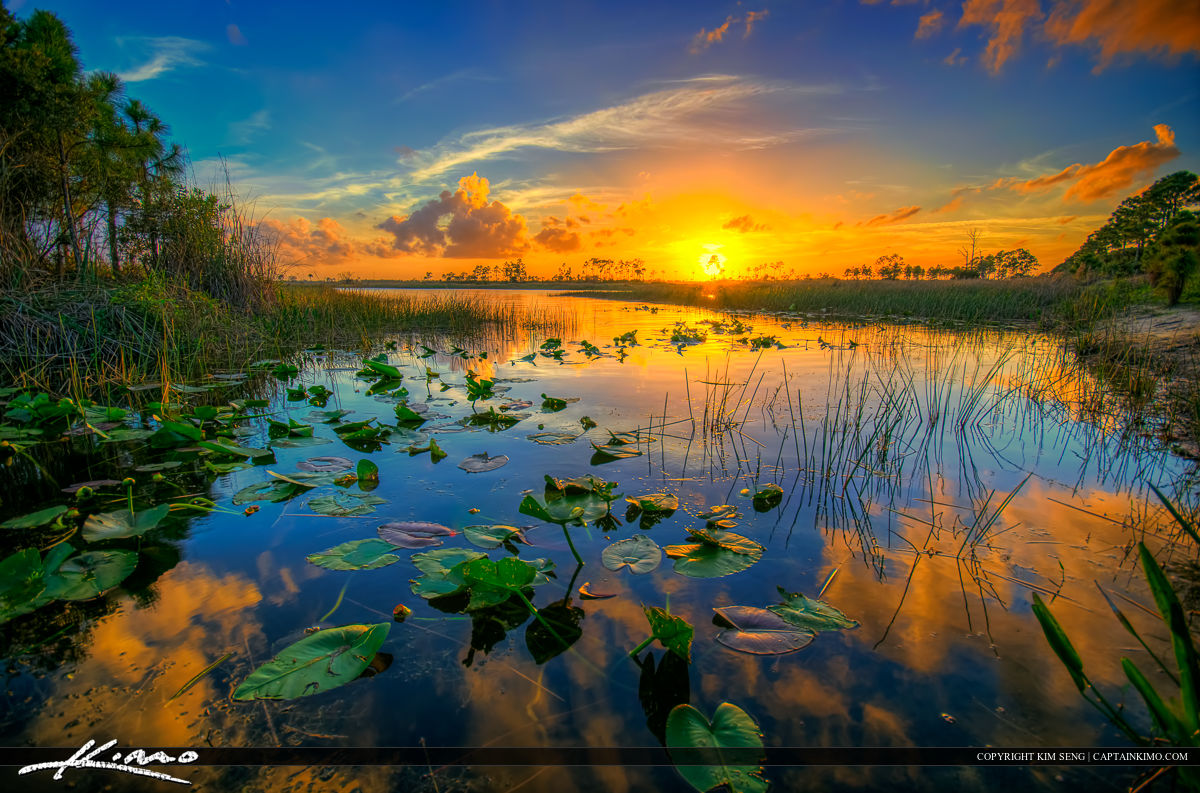 Sunset at River in Pine Glades Natural Area