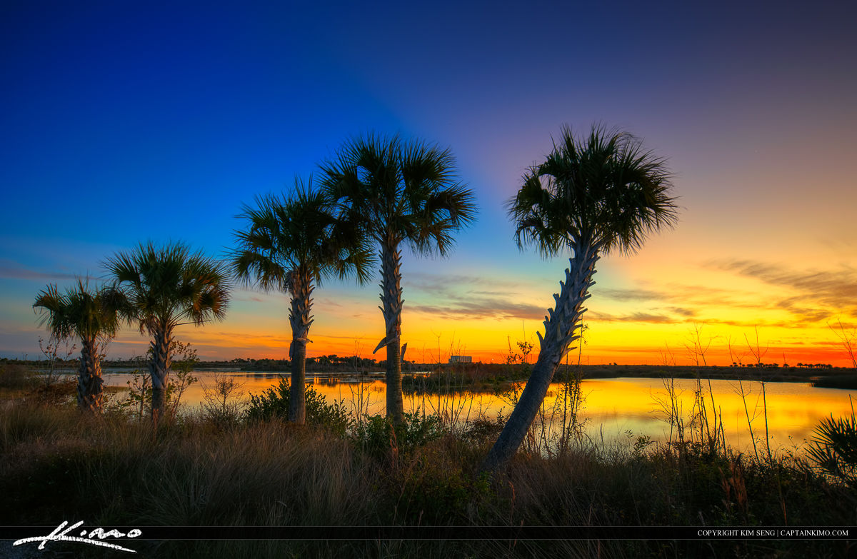 Wellington Environmental Preserve Sunset oover Palm Trees