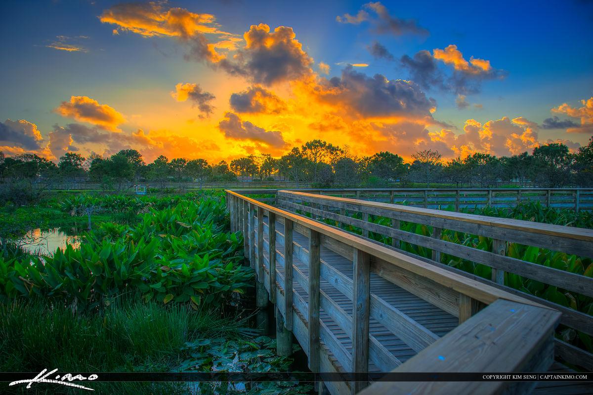 Wakodahatchee Wetlands Sunrise Boardwalk Delray Beach FL