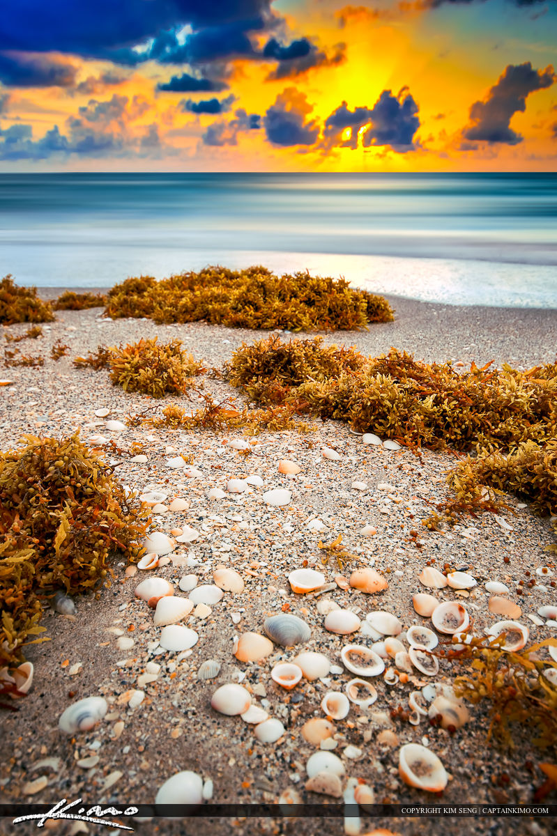 Beach Wall Art Photography Scene Florida Sunrise