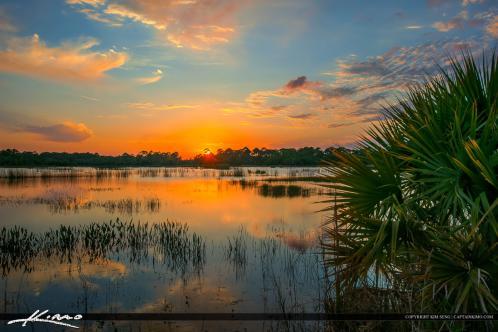 Winding Waters Sunset Wetlands Area