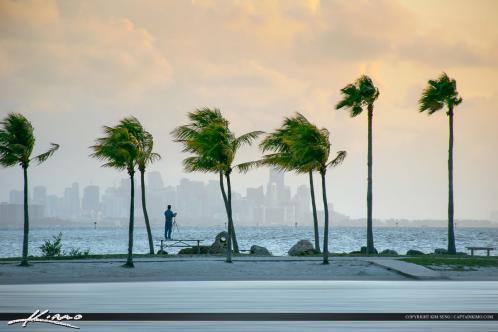 Lookin for the money shot at Miami Dade County Florida at Matheson Hammock Park.