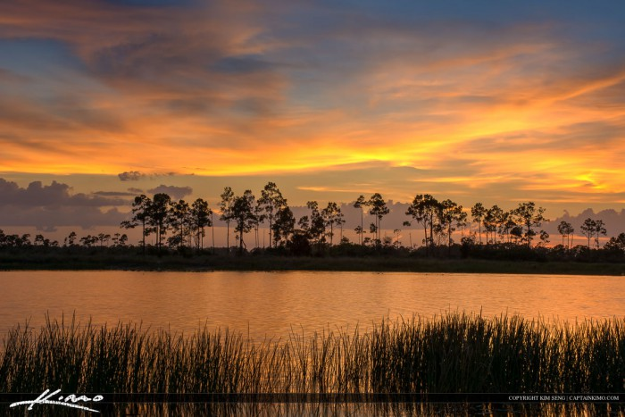 Beautiful Sunset along the Lake at Pine Glades Jupiter Florida