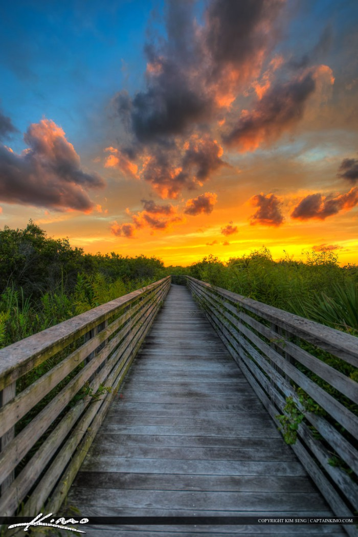 Boardwalk at Juno Beach Dunes During Sunset