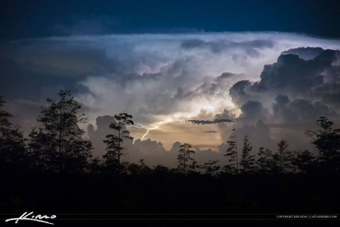 Lightning Over Florida Wetlands Storm