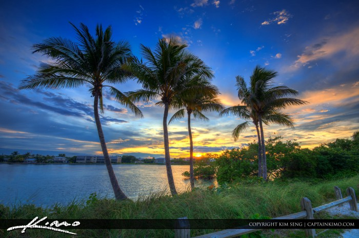 Coconut Tree Sunset at Jupiter Island Florida