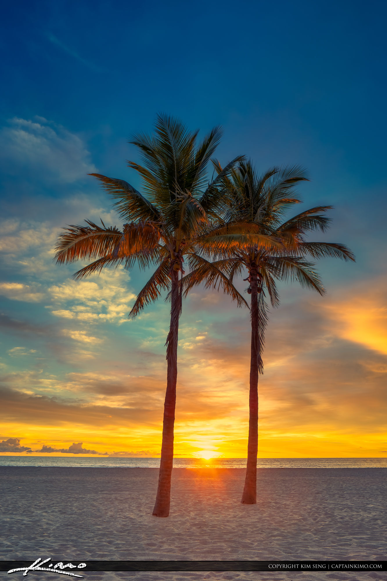 Two Coconut Palm Tree Sunrise at Beach