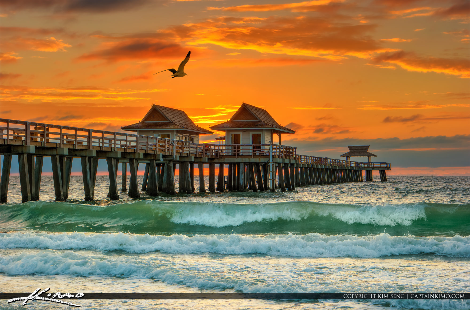 Seagull Flying Over Naples Pier at Sunset