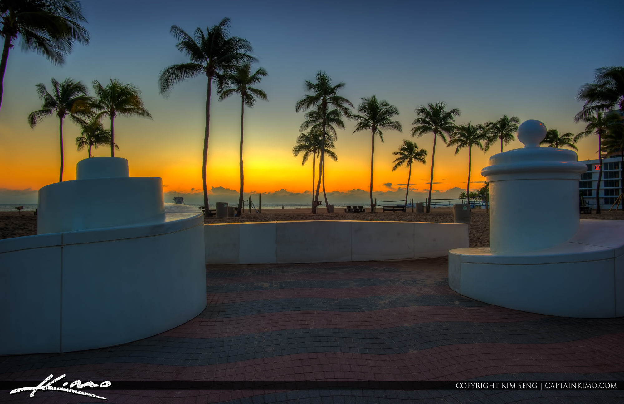 Fort Lauderdale Beach Park Coconut Tree Before Sunrise