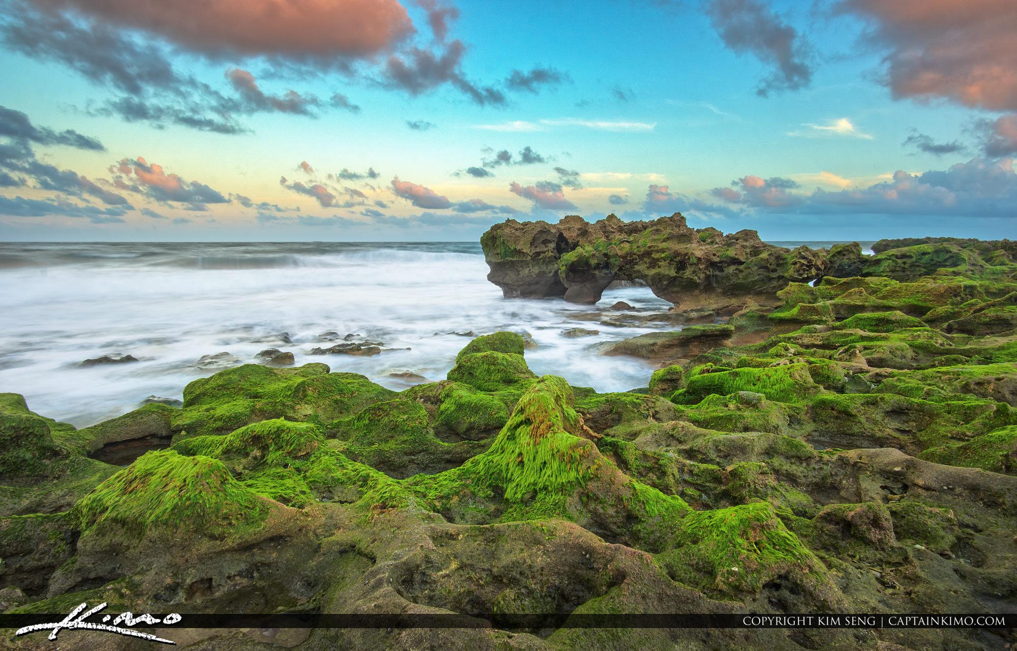 Coral Cove Beach Rock with Algae