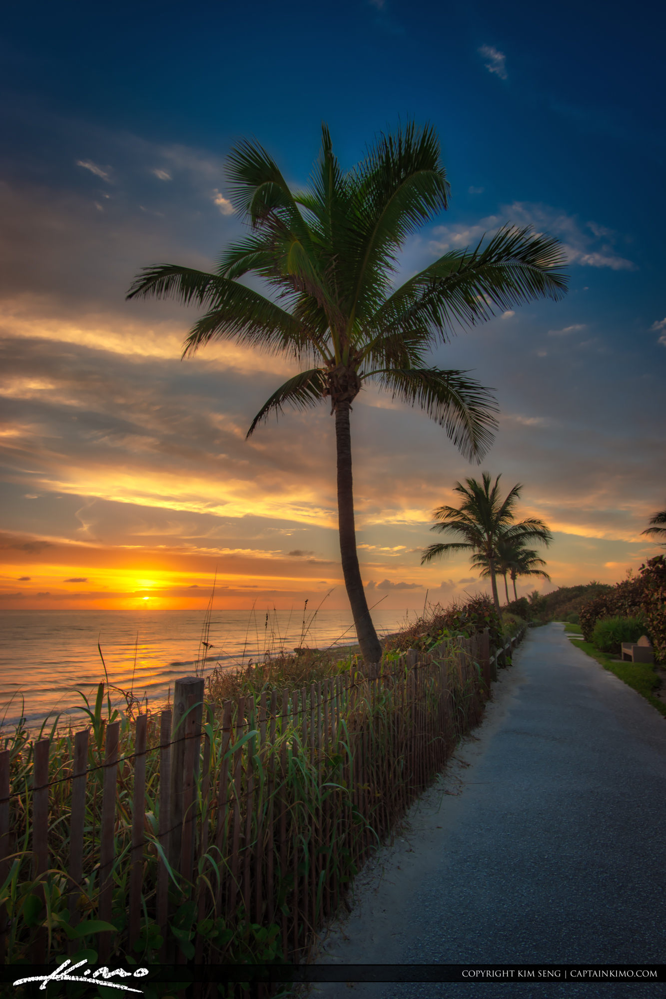 Sunrise at Coral Cove Park Coconut Tree