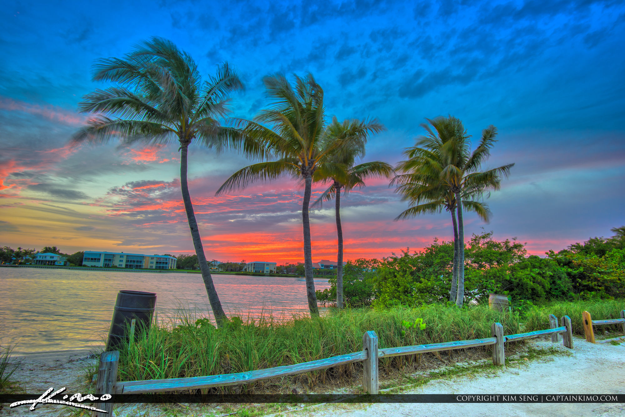 Jupiter Island Sunset Along the Waterway with Coconut Palms