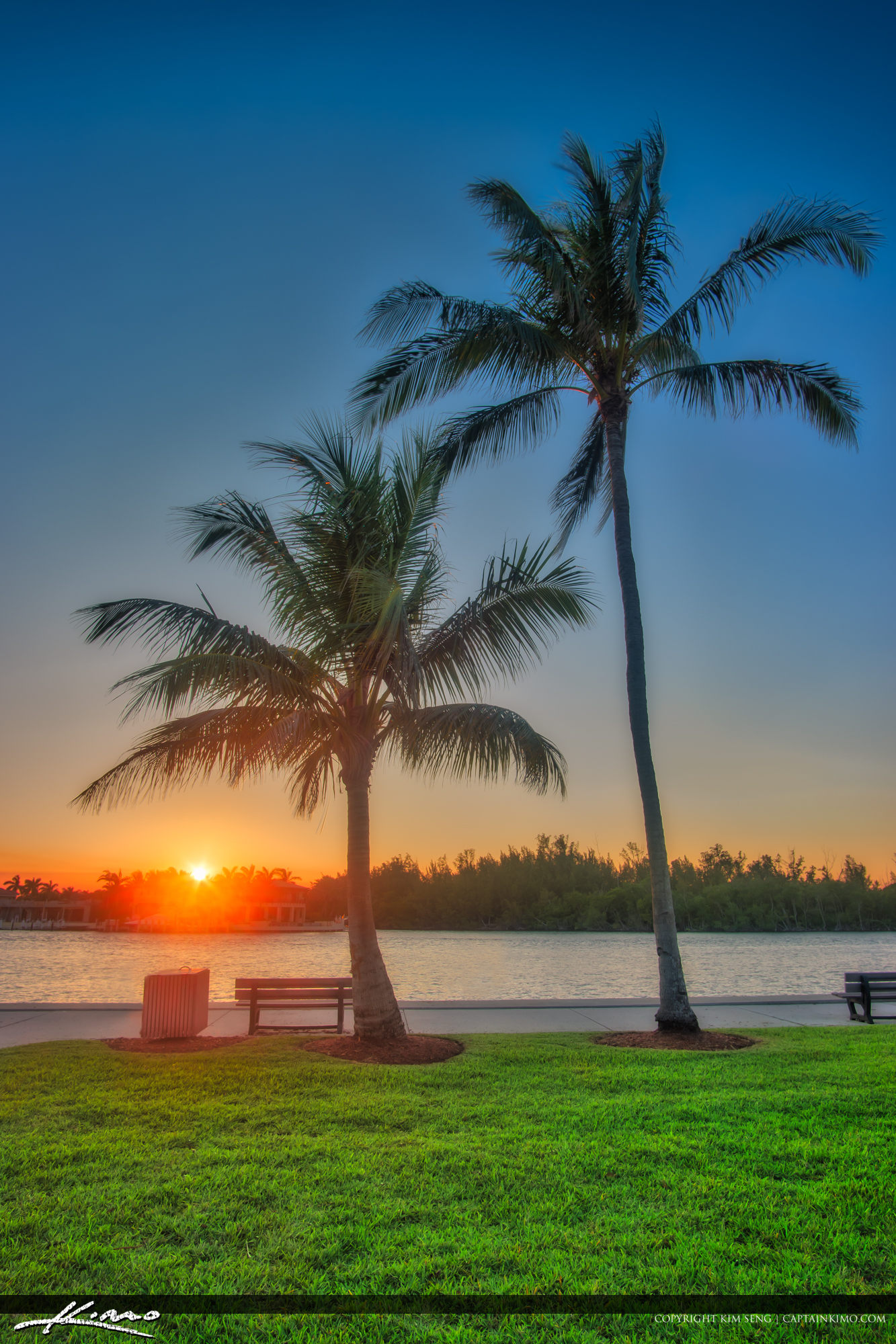 Sunset Red Reef Park Sunset Boca Raton Florida Coconut Trees
