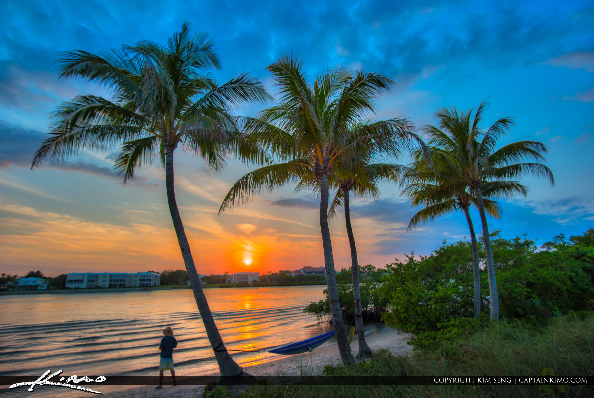 Jupiter Island Sunset along Waterway with Coconut Trees