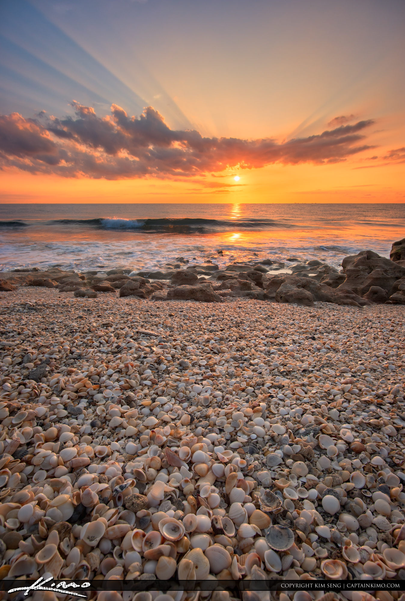 Seashells and Sunrays Over Beach at Coral Cove Park
