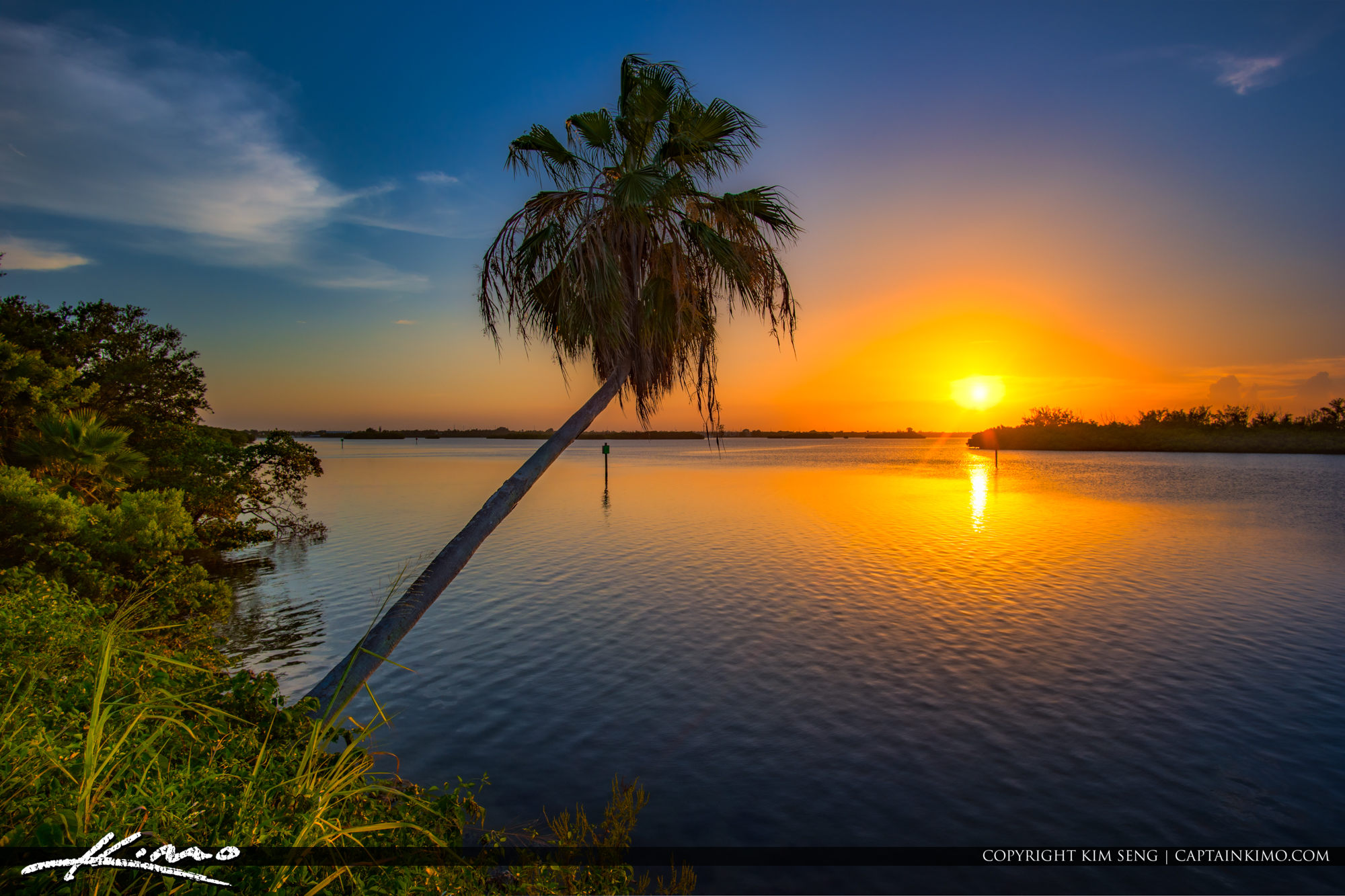 Indian River Sunset with Palm Tree Fort Pierce Florida