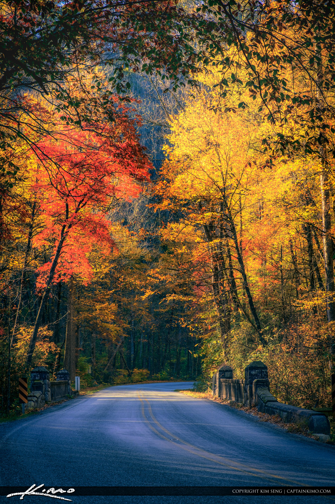 Moore Cove Falls Trail Entrance Fall Colors Brevard North Carolina