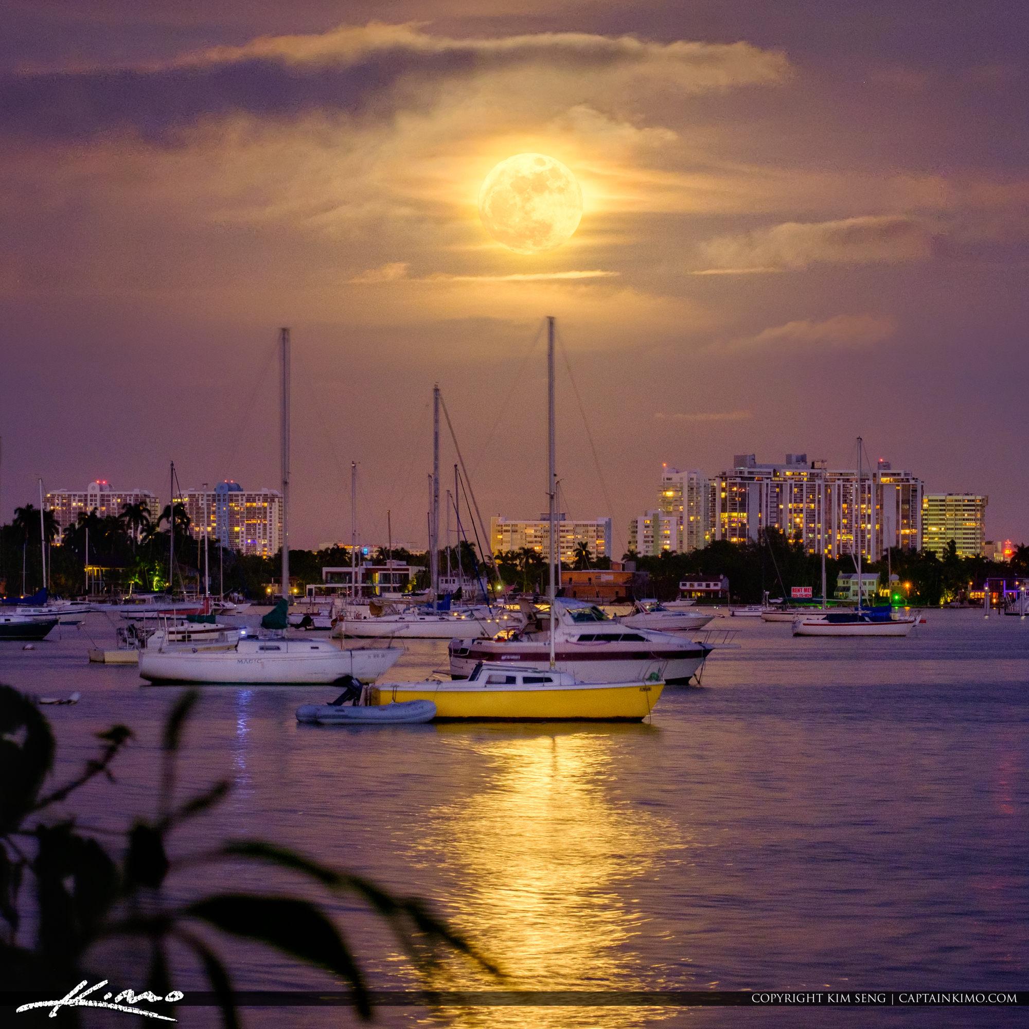 Full Moon Rise Watson Island Marina Miami Florida Square