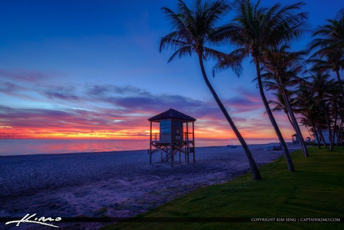 Deerfield Beach International Fishing Pier with Coconut Trees