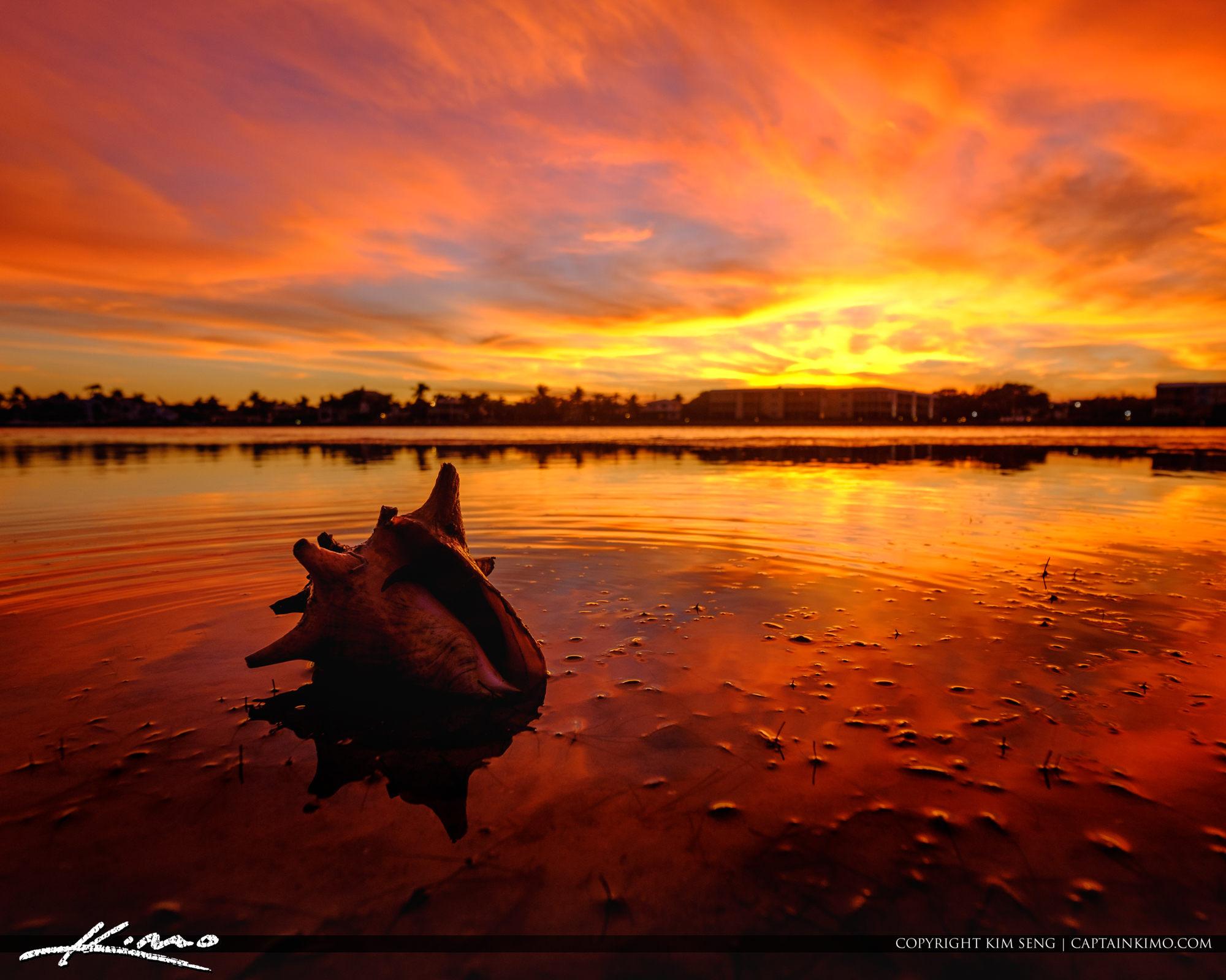 Conch Shell Jupiter Tequesta Florida Fiery Sunset
