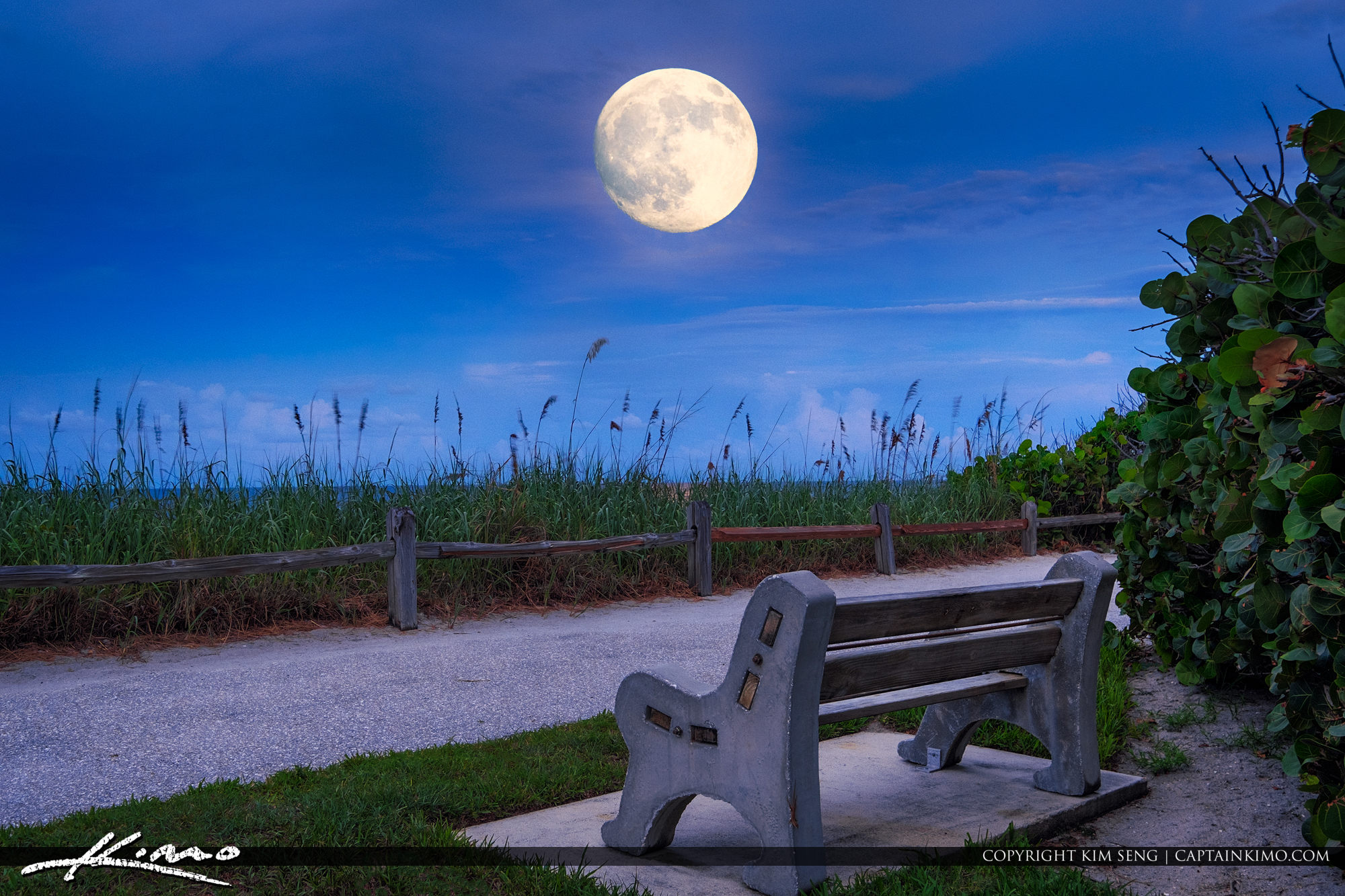 Coral Cove Park Moonrise Over the Beachin Jupiter Island