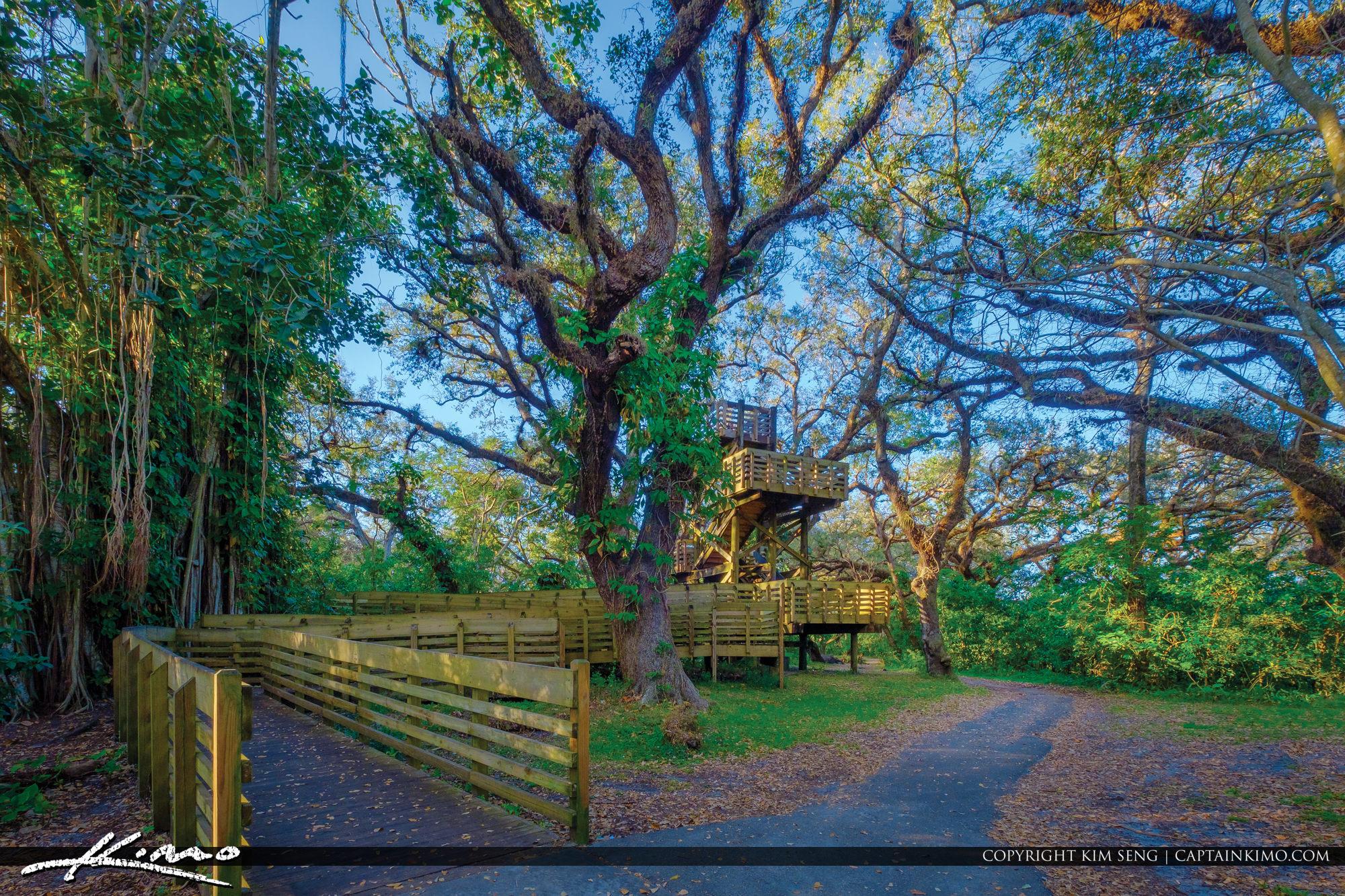 Tree Tops Park Davie Florida Broward County Park