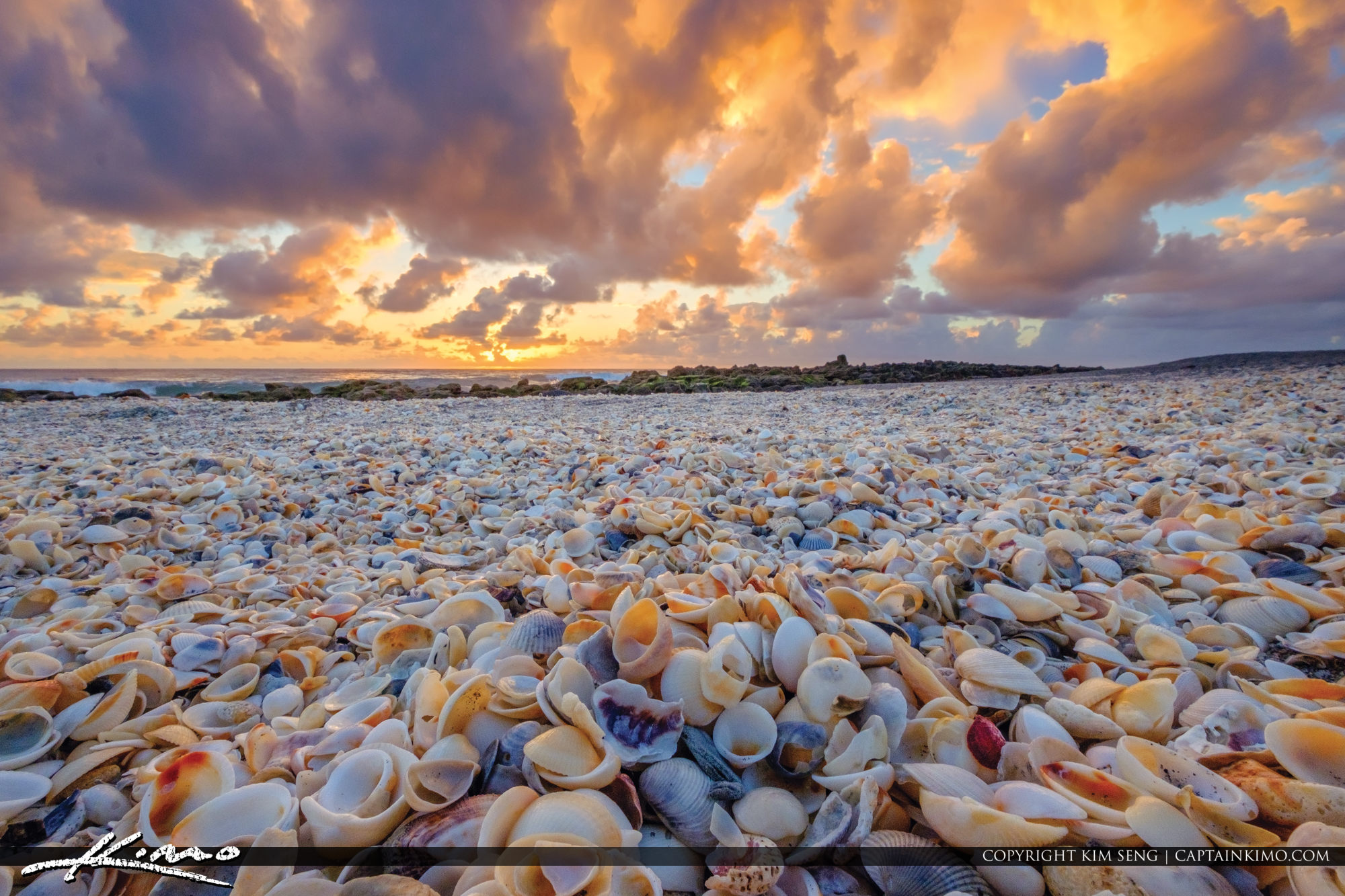 Coral Cove Park Shells Jupiter Island Beach Sunrise
