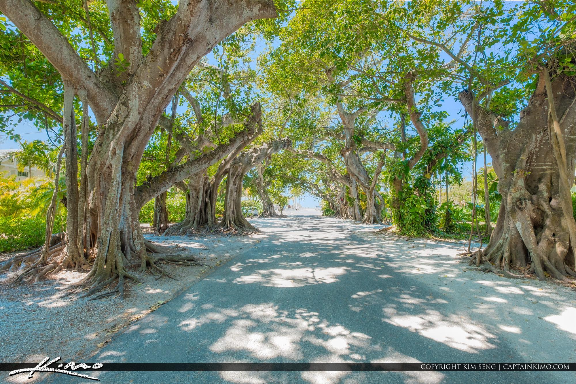 Banyan Street Boca Grande Florida Gasparilla Island