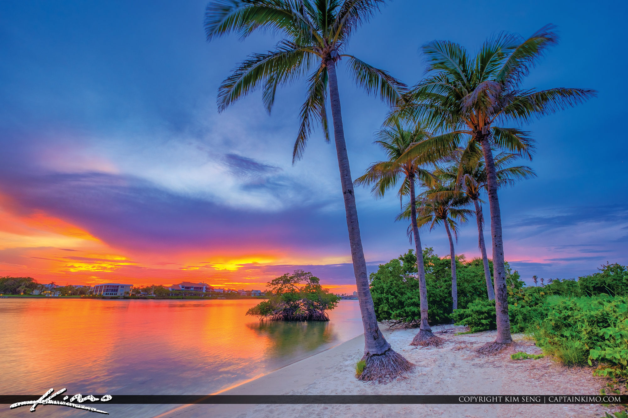 Coconut Tree Sunset Waterway Loxahatchee River North