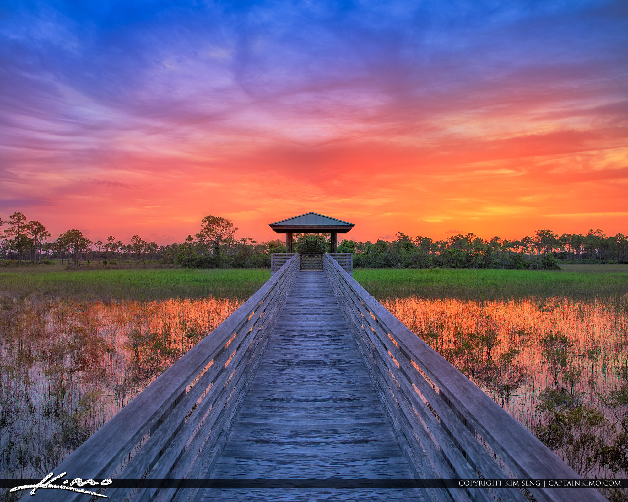 Sunset from Sweetbay Natural Area in Palm Beach Gardens