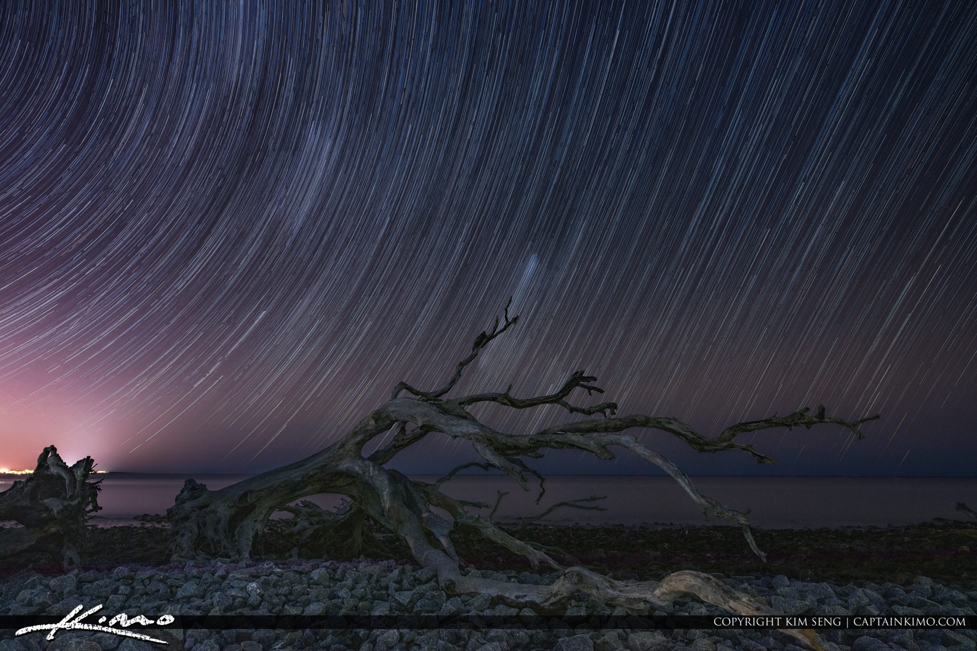 Star Trail Driftwood Beach Jekyll Island Georgia Golden Isles