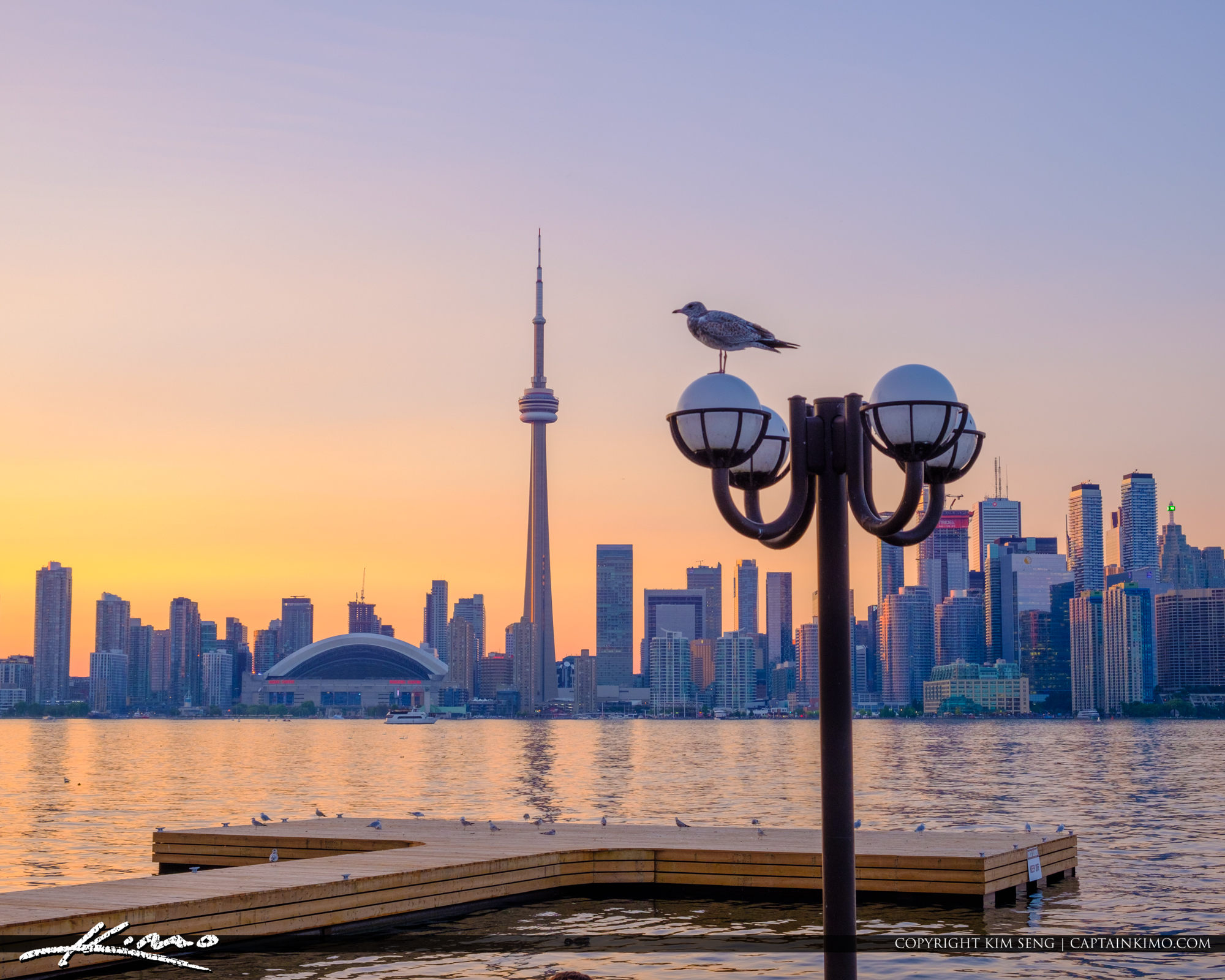 Lightpost and Seagull Skyline View from Centre Island Sunset