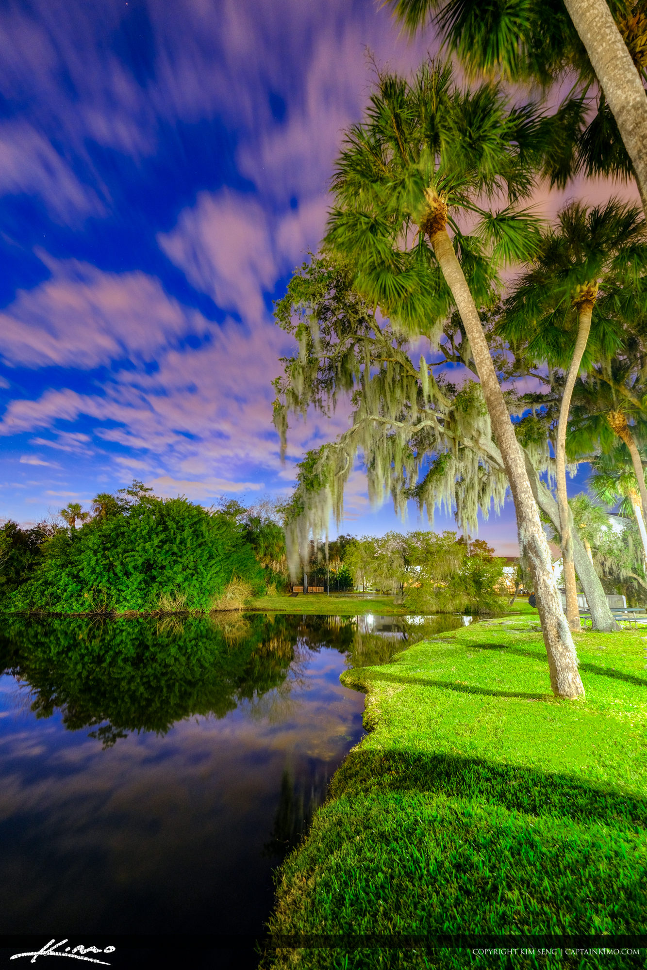 Tampa Florida BBQ Picnic Area