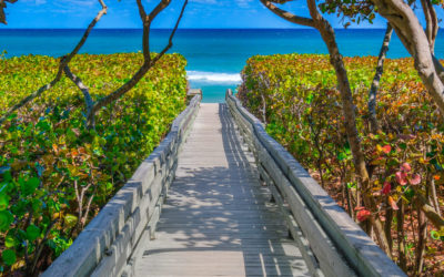 Jupiter Florida Beach Access Wooden Boardwalk