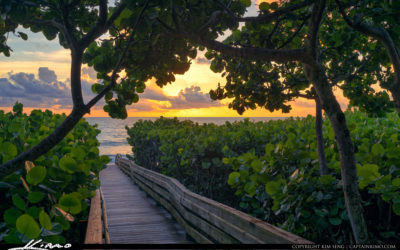 Jupiter Beach Access 45 Sunrise at Boardwalk