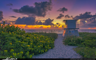 Hobe Sound Beach Sunrise at Ocean