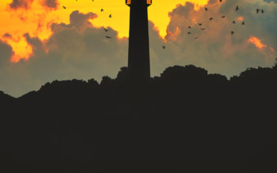 Jupiter Lighthouse Bird Silouette Sunrise