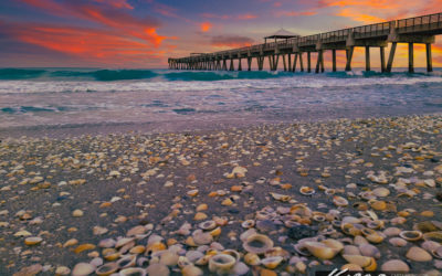 Juno Beach Pier Seashell at Beach Wave Colorful Sky